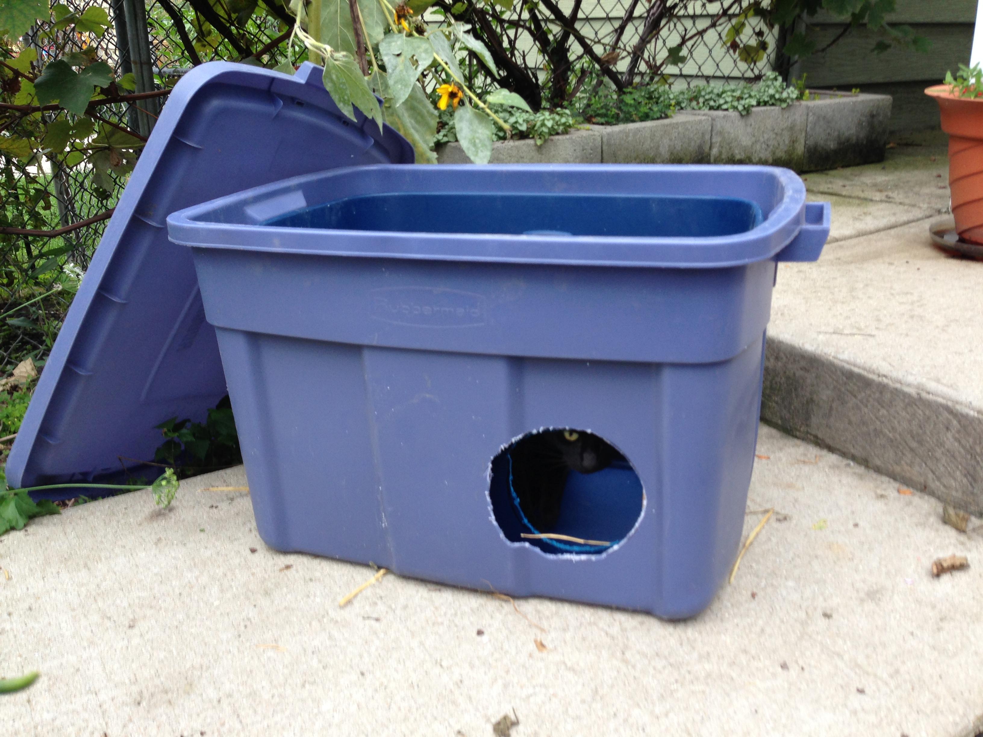 Outdoor cat box ideas