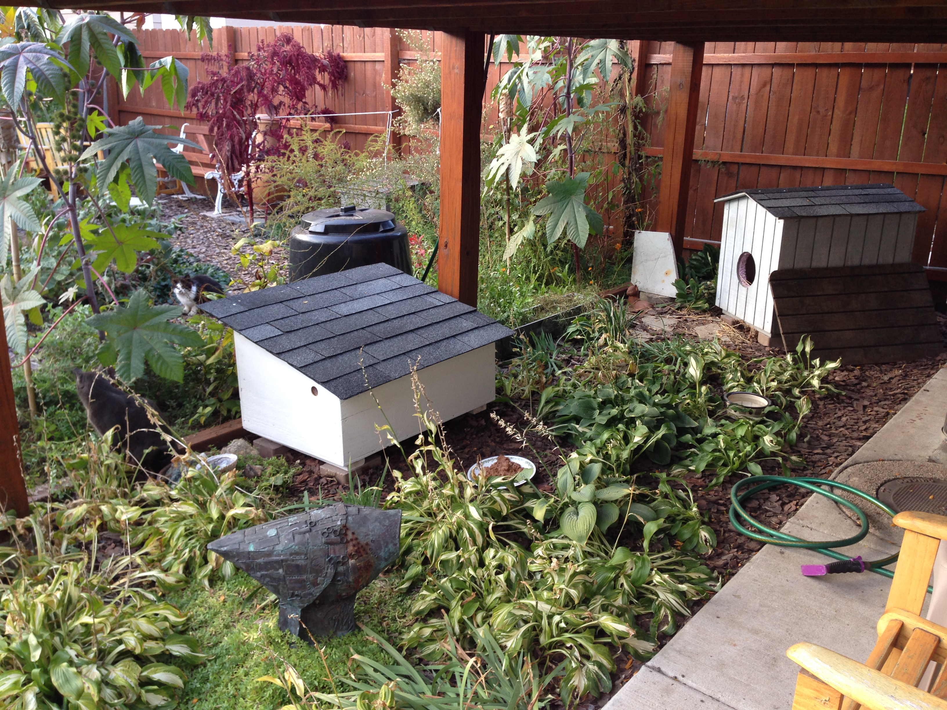 Outdoor Cat Houses Blog Fresh Photograph Of Outdoor Kitty