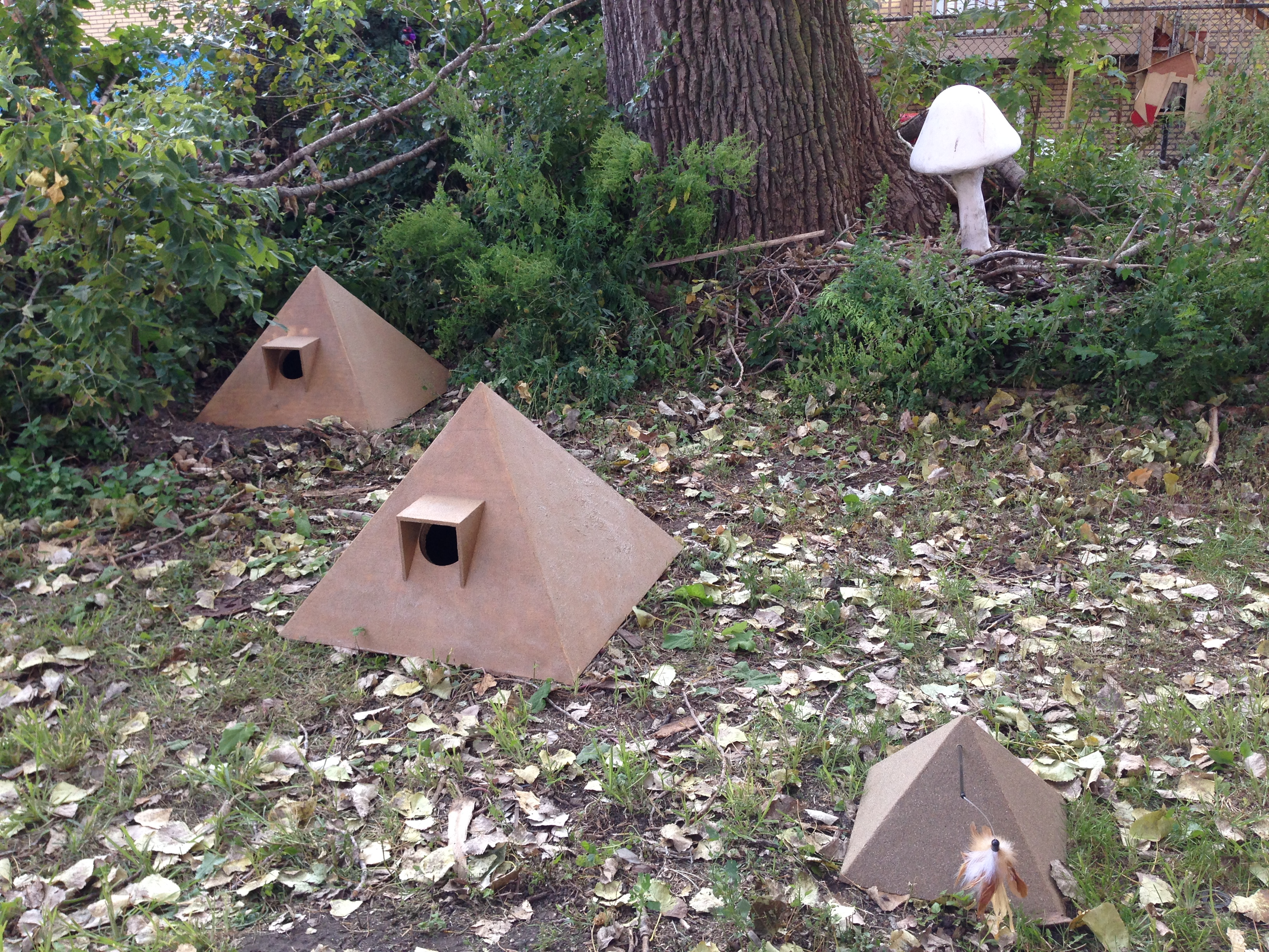 how to build outdoor shelter for stray cats